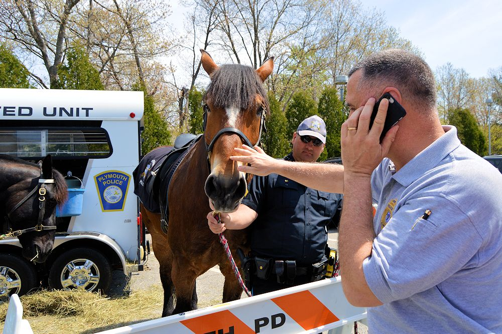 Chief Botieri greets one of Plymouth Police Department's Mounted Units Horses